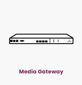 مدیا گیتوی وظیفه تبدیل ترافیک TDM به IP را در VoIP بر عهده دارد. مدیا گیتوی شرکت چکاوک ساخت ایران بوده و ظرفیت آن تا 4E1 میباشد.